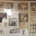 Stage Taekwondo