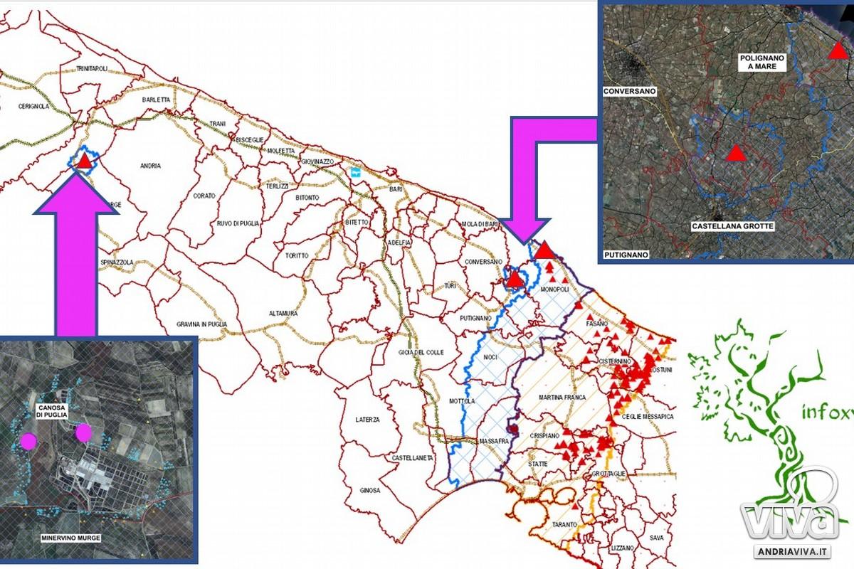 Mappa Xylella Puglia.Bat Rilevato Focolaio Xylella A Canosa Di Puglia