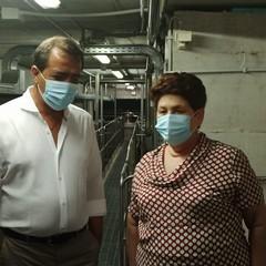 Gli olivicoltori incontrano il Ministro Teresa Bellanova