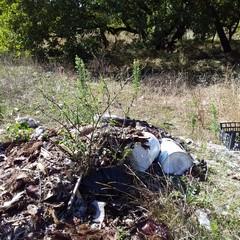 rifiuti di ogni tipo dentro il boschetto di Sant'Agostino