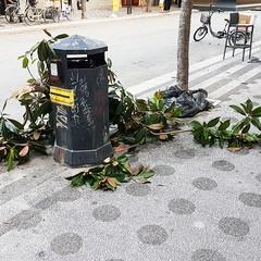 Inciviltà in città ad Andria