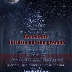 La notte dei Santuari: ad Andria partecipa la Basilica della Madonna dei Miracoli