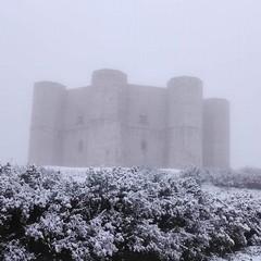 abbondante nevicata nella notte nella zona della Murgia andriese