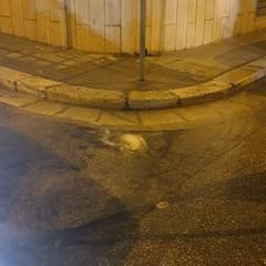 Rottura del tronco idrico tra via Maggior Galliano e Sosta San Riccardo