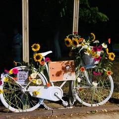 la bici dedicata a Patrizia Paradiso a cui hanno rubato la sella
