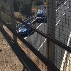 incidente stradale sulla provinciale Andria Bisceglie