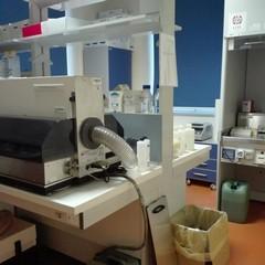 foto laboratorio anatomia patologica IRCCS