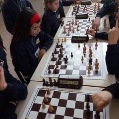 """Il 3° Circolo """"Riccardo Cotugno"""" conquista l'accesso alle regionali di scacchi"""