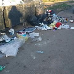 Borgata Troianelli invasa dai rifiuti