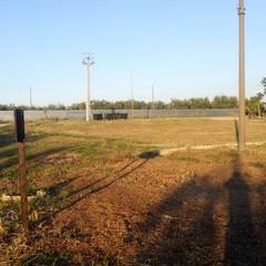 Aree verdi ancora affidate  ai volontari della Borgata Troianelli
