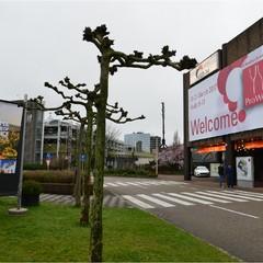 ProWein, a Düsseldorf storie e leggende dei vini della Bat
