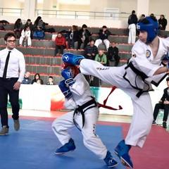 Taekwondo, buone affermazioni per gli atleti andriesi