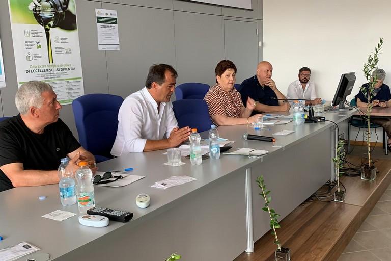 olivicoltori incontrano il Ministro Teresa Bellanova
