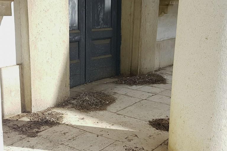 Abbandonata all'incuria una cappella funeraria nel cimitero di Andria. <span>Foto Riccardo Di Pietro</span>
