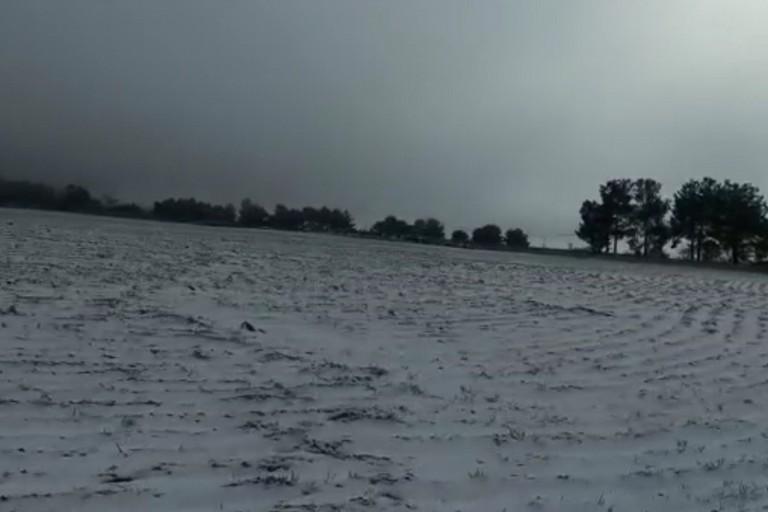 La neve imbianca la Murgia