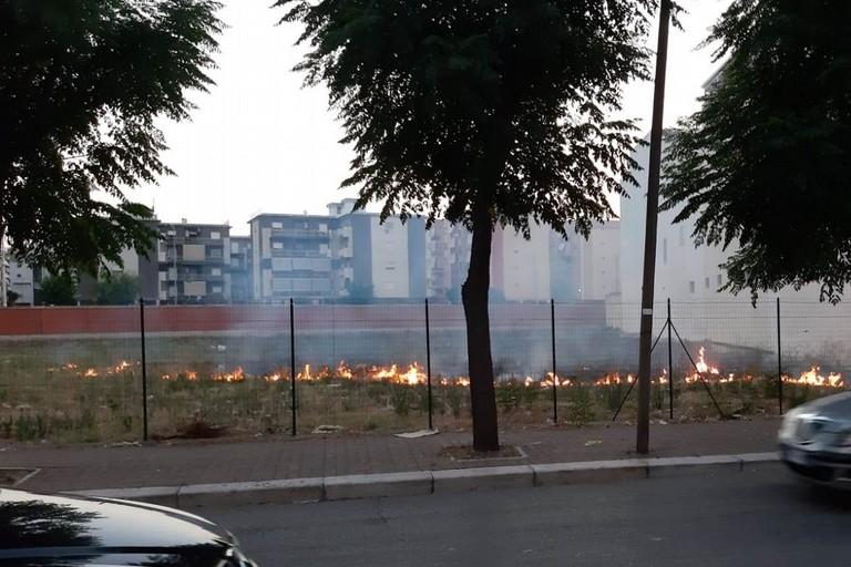 incendio nei pressi di via Vecchia Barletta