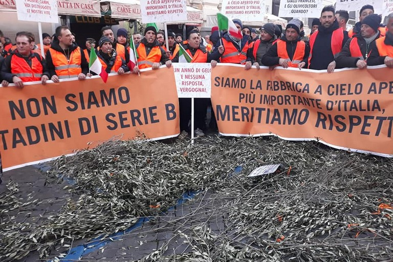 Gilet arancioni a Roma