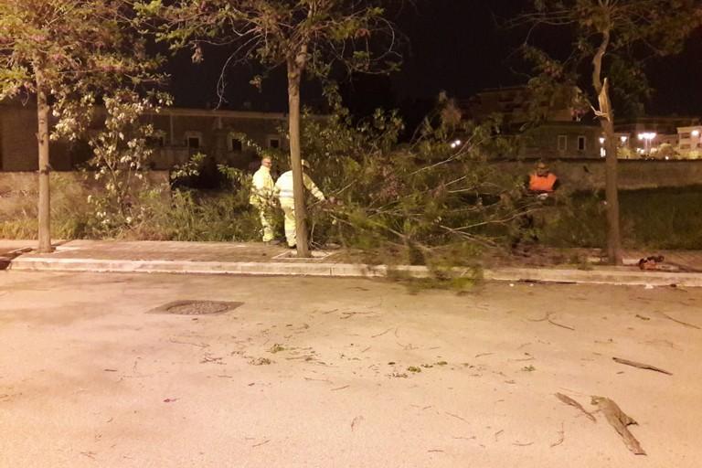 Allerta meteo della Protezione Civile: torna il vento forte su tutto l'Abruzzo