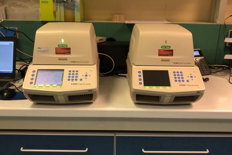apparecchiatura per l'analisi dei tamponi