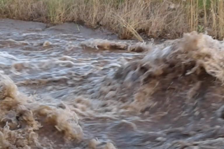 Scoppiate tubature, campagne inondate dall'acqua a Minervino Murge