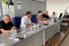 Xylella, Pac, calamità naturali e burocrazia: le richieste degli olivicoltori al Ministro Bellanova