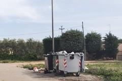 Troianelli: stop all'immondizia per strada
