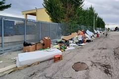 Raccolta differenziata rifiuti ad Andria: aggiudicata alla Soc. Sangalli la gara ponte per altri due anni