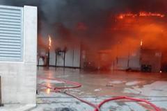 """Incendio Dalena, Troia (Verdi): """"Dedicare attenzione anche ai territori limitrofi, quali Andria e Trani"""""""