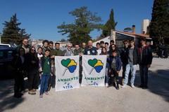 Allarme processionaria per la pineta di Castel del Monte