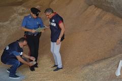 Aumentano i sequestri di prodotti agroalimentari tarocchi