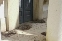 Abbandonata all'incuria una cappella funeraria nel Cimitero di Andria