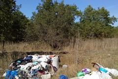Una bellissima soleggiata domenica di metà ottobre, tra rifiuti di ogni tipo dentro il boschetto di Sant'Agostino