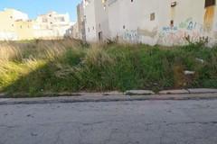 L'intervento dopo ripetute segnalazioni: via Marche finalmente ripulita dai rifiuti