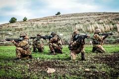 """Esercitazione al """"Combat-Ready"""" per i neo VFP1 della Brigata Meccanizzata """"Pinerolo"""" al poligono di Torre di Nebbia"""