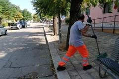Raccolta rifiuti: il 1° maggio solo utenze non domestiche e zona Castel del Monte