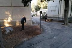 Commemorazione dei Defunti: lavori manutentivi per il Cimitero di Andria