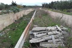 Continua lo scempio ambientale per il canale Ciappetta Camaggio