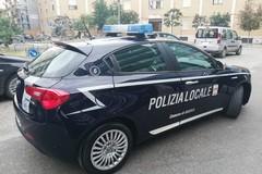 Ancora controlli contro l'abusivismo commerciale da parte di Polizia di Stato e Polizia Locale