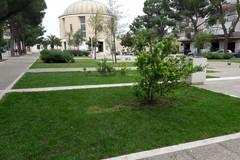 Pulizia e taglio dell'erba a piazza SS. Trinità. Il Comitato parrocchiale chiama a raccolta i residenti