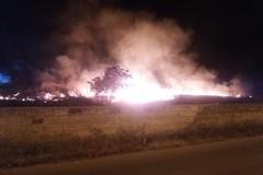 Incendi, aggiornato catasto. Elenchi per 30 giorni pubblicati sul portale del Comune di Andria