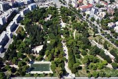 Alberatura stradale e Forestazione urbana