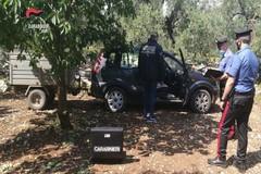 Ladro andriese arrestato per furto di autovettura ad agricoltore biscegliese