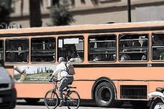 Trasporto pubblico di Andria: 14 dipendenti rischiano il posto di lavoro