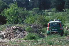 Terreni trasformati abusivamente in pascolo: sequestro nelle campagne di Andria