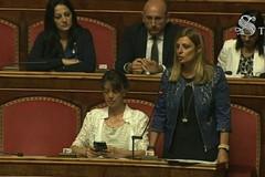 """Sparatoria villa comunale, sen. Piarulli (M5S): """"Ad Andria chiesto intervento militari"""""""