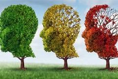 Prevenzione e formazione per la cura delle demenze, incontro con i soci dell'APeS