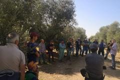 """""""Il lavoro si fa strada"""", la Flai e Cgil incontrano lavoratori nelle campagne di Andria"""