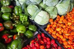 Sprechi alimentari: in Puglia il cibo buttato supera le 250mila tonnellate all'anno