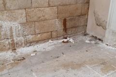 Il centro storico continua a regalarci episodi indecenti: il muro della Cattedrale scambiato per un bagno