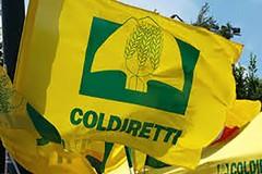 Anche ad Andria, Coldiretti raccoglie firme contro il cibo anonimo